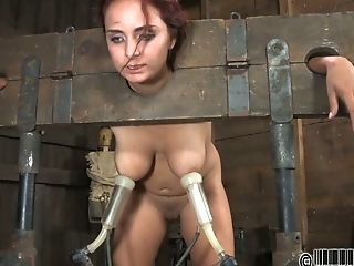 Cuddly Looking Crimson-haired Beauty Gets Her Neck And Wrists Stack In Pillory
